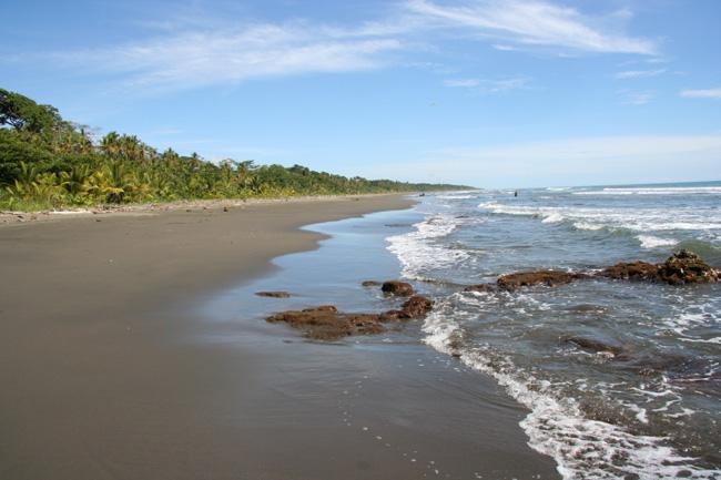Beach Cahuita Playa Negra